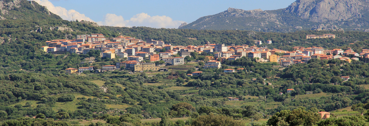 Image of the city of Calangianus