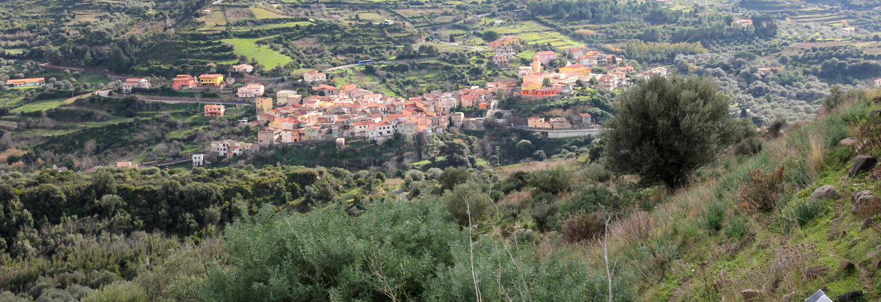 Image of the city of Modolo