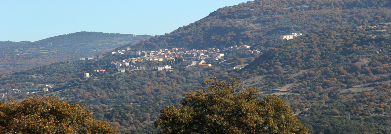 Image of the city of Sorradile